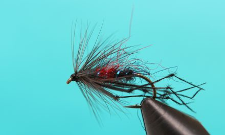 Fly Dressers' Guild, John Watts' trophy at Draycote 24th August